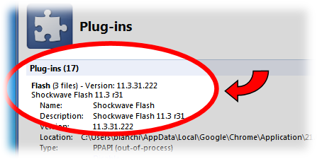 chrome-plugins-details-flash